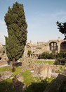 Rome - outlook to Forum romanum from Palatine hill Stock Photos