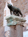 Rome symbol with a she wolf and romolo and remo bronze statue on a granite column in italy Stock Photos