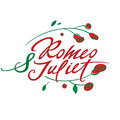 Romeo and juliet vector inscription with roses Royalty Free Stock Image