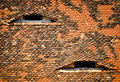 Roof with eyes Royalty Free Stock Photo