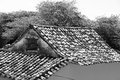 Roof of an old house Royalty Free Stock Photo