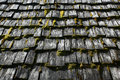 Roof shingles Royalty Free Stock Photo