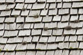 Roof shingles old style wooden with moss and weeds growing between them Royalty Free Stock Image
