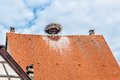 Roof with storks nest taken in colmar france Stock Images