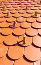 Roof tiles background detail of modern red with snow guards Royalty Free Stock Photos