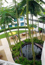 Roof top garden design Royalty Free Stock Photo