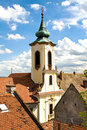 The roofs of Szentendre Royalty Free Stock Photo