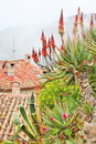 Rooftops of Eze village Royalty Free Stock Images