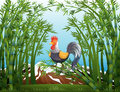 A rooster in the bamboo forest illustration of Stock Images