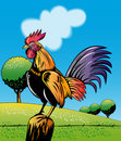 Rooster cockerel perch on post Royalty Free Stock Photo