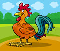 Rooster farm animal cartoon illustration of funny comic bird Stock Photo