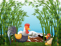 A rooster and a hen at the rainforest illustration of Royalty Free Stock Photography