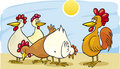 Rooster and hens Royalty Free Stock Photography