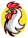 Rooster mascot vector stock of head easy to edit and suitable for many purpose Stock Photography