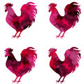 Rooster, triangular geometric polygonal roosters, isolated illustration of cock on white background Royalty Free Stock Photo