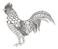 Rooster zentangle stylized, vector, illustration, pattern, freehand pencil, hand drawn. black and white. Ornate. Zen art.