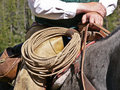 Rope on Saddle Royalty Free Stock Photography