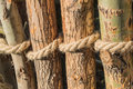 Rope tied in a knot around wooden poles, fence posts. Closeup Royalty Free Stock Photo