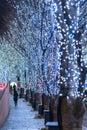 Roppongi Hills winter illumination festival ( Keyakizaka Galaxy Illuminations )