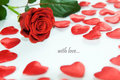 Rosa di colore rosso e piccoli cuori Fotografie Stock