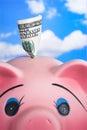 Rosafarbene keramische Piggy Querneigung Stockfotografie