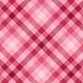 Rosafarbenes Plaid Stockbilder
