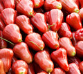 Rose apple in the market Stock Images
