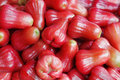 Rose apples Royalty Free Stock Photo