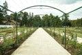 Rose Arch In the Garden of Esterhazy Castle Royalty Free Stock Photo