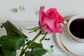 Rose on a background of coffee red Royalty Free Stock Photo