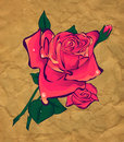 Rose on a background paper Stock Image