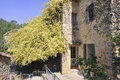 Rose banks stone house in the cevennes with a huge Stock Photography