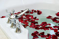 Rose bathtub closeup with petals Royalty Free Stock Photo