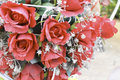 Rose bloom flower art Royalty Free Stock Photo