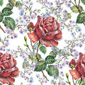 Rose , blue flower,  watercolor, pattern seamless Royalty Free Stock Photo