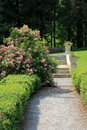Rose bushes and pebbled walkway in garden gorgeous manicured shrubs lining a with stone steps leading into a secluded Stock Images