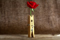 Rose and clothespin on burlap background Stock Photography