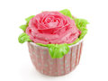 Rose cup-cake Royalty Free Stock Photos