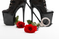 Rose with dominatrix equipment isolated on white background Royalty Free Stock Photography