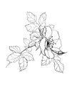 Rose flower pencil drawing dog Royalty Free Stock Photo