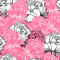 Rose flowers background Stock Image