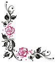 Rose flowers border black and pink roses vector illustration Stock Image