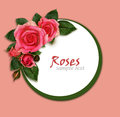 Rose flowers composition and frame on pink background Royalty Free Stock Images
