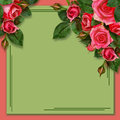 Rose flowers on holiday background pink composition Stock Photo