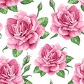 Rose flowers, petals and leaves in watercolor style on white background. Seamless pattern for textile, wrapping paper