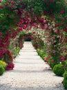 Růže zahrada