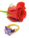 Rose and golden ring isolated on white background Royalty Free Stock Photography