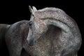 Rose grey arabian horse on the dark background Royalty Free Stock Photos
