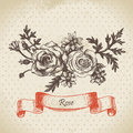 Rose hand drawn vintage design Stock Photo