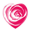 Rose heart halftone pink with petal detail in dotted Stock Photo